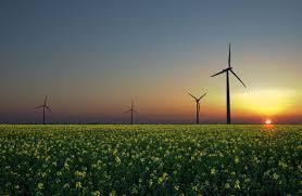 Сенат принял новые условия для развития зеленой энергетики