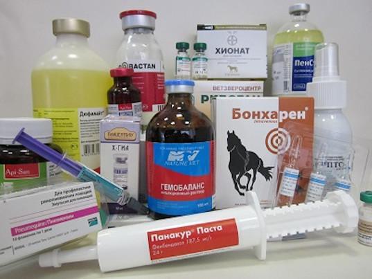 В ЕАЭС создается единый рынок ветеринарных препаратов