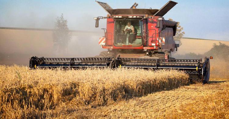 Аскар Мамин поручил завершить уборку урожая в кратчайшие сроки